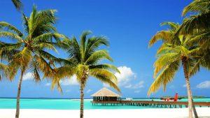 Waktu Terbaik untuk Mengunjungi Maladewa